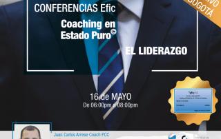 Ciclo Conferencias en Bogotá Efic